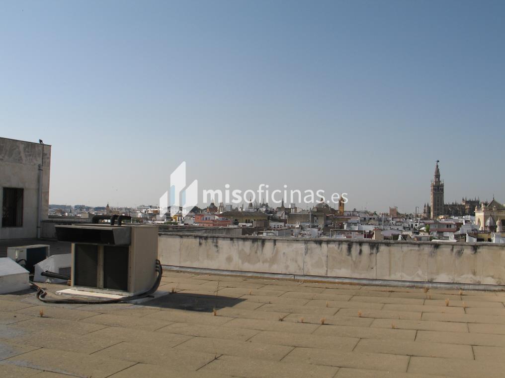 Oficina en alquiler en Plaza Encarnación 24 de 5.955 metros en Sevilla foto 3