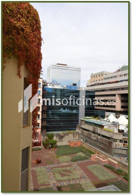 Oficina en venta de 223 metros en Salamanca, Madrid foto 3