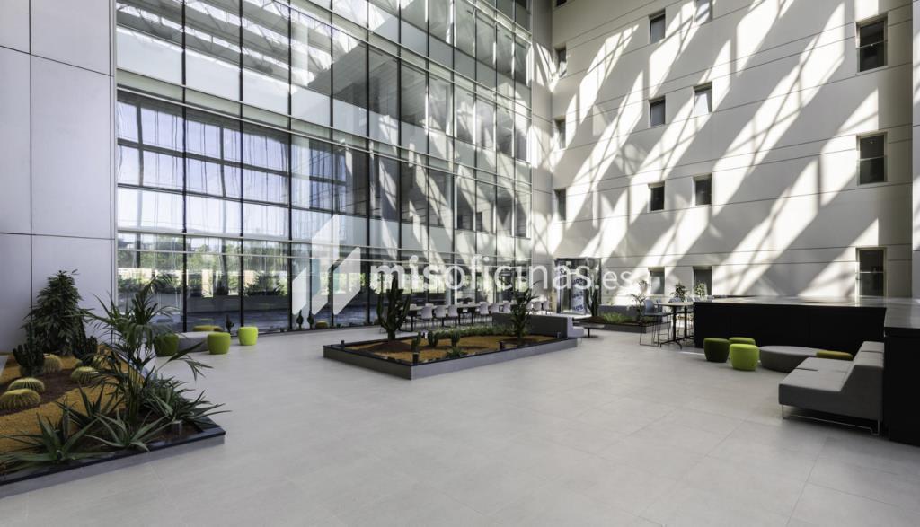 Oficina en alquiler en Calle Ribera Del Loira 28 de 1.788 metros en Campo de las Naciones-Aeropuerto, Madrid foto 6