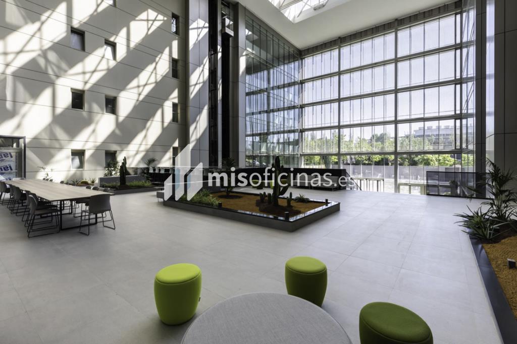 Oficina en alquiler en Calle Ribera Del Loira 28 de 1.788 metros en Campo de las Naciones-Aeropuerto, Madrid foto 7