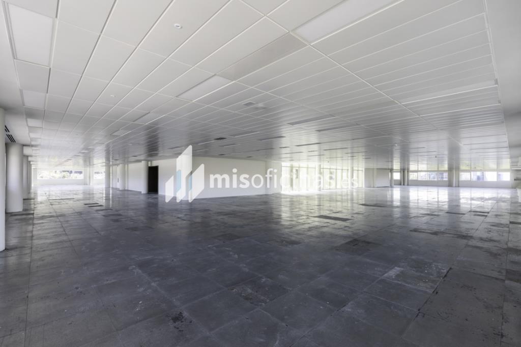 Oficina en alquiler en Calle Ribera Del Loira 28 de 1.788 metros en Campo de las Naciones-Aeropuerto, Madrid foto 10