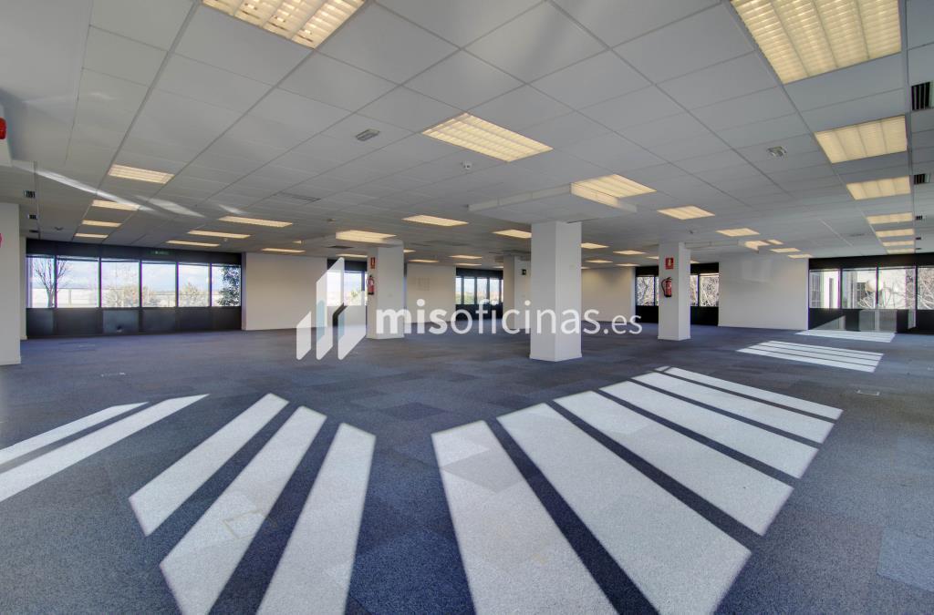 Oficina en alquiler en Calle Caléndula 93-95 de 112 metros en Alcobendas foto 14