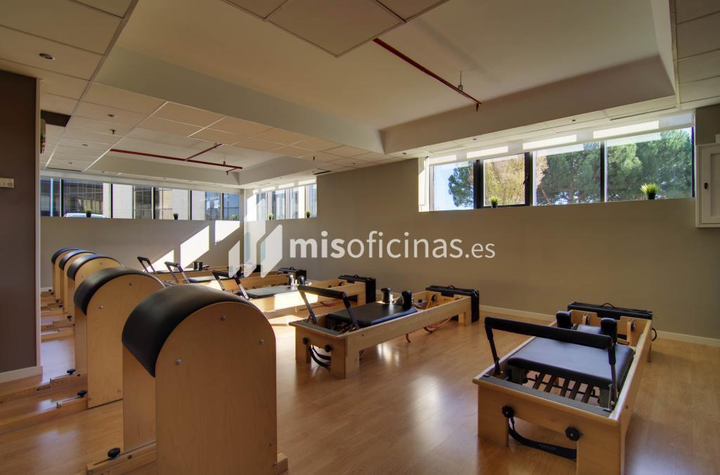 Oficina en alquiler en Calle Caléndula,  93 de 584 metros en Alcobendas foto 15