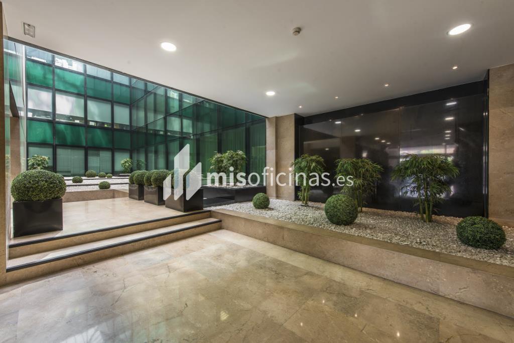 Oficina en alquiler en Calle Trespaderne 29 de 591 metros en Campo de las Naciones-Aeropuerto, Madrid foto 3